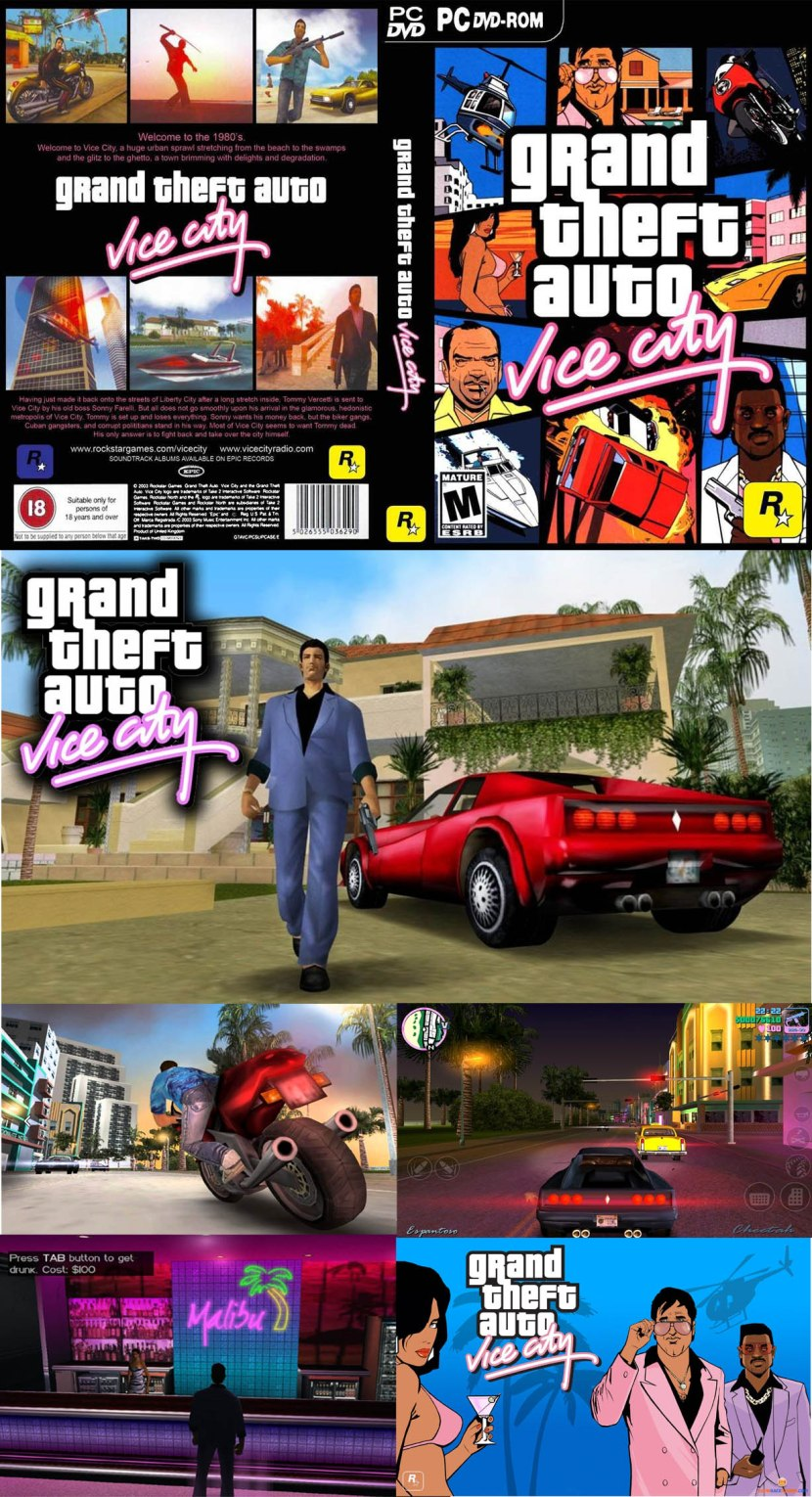 viceCity copy